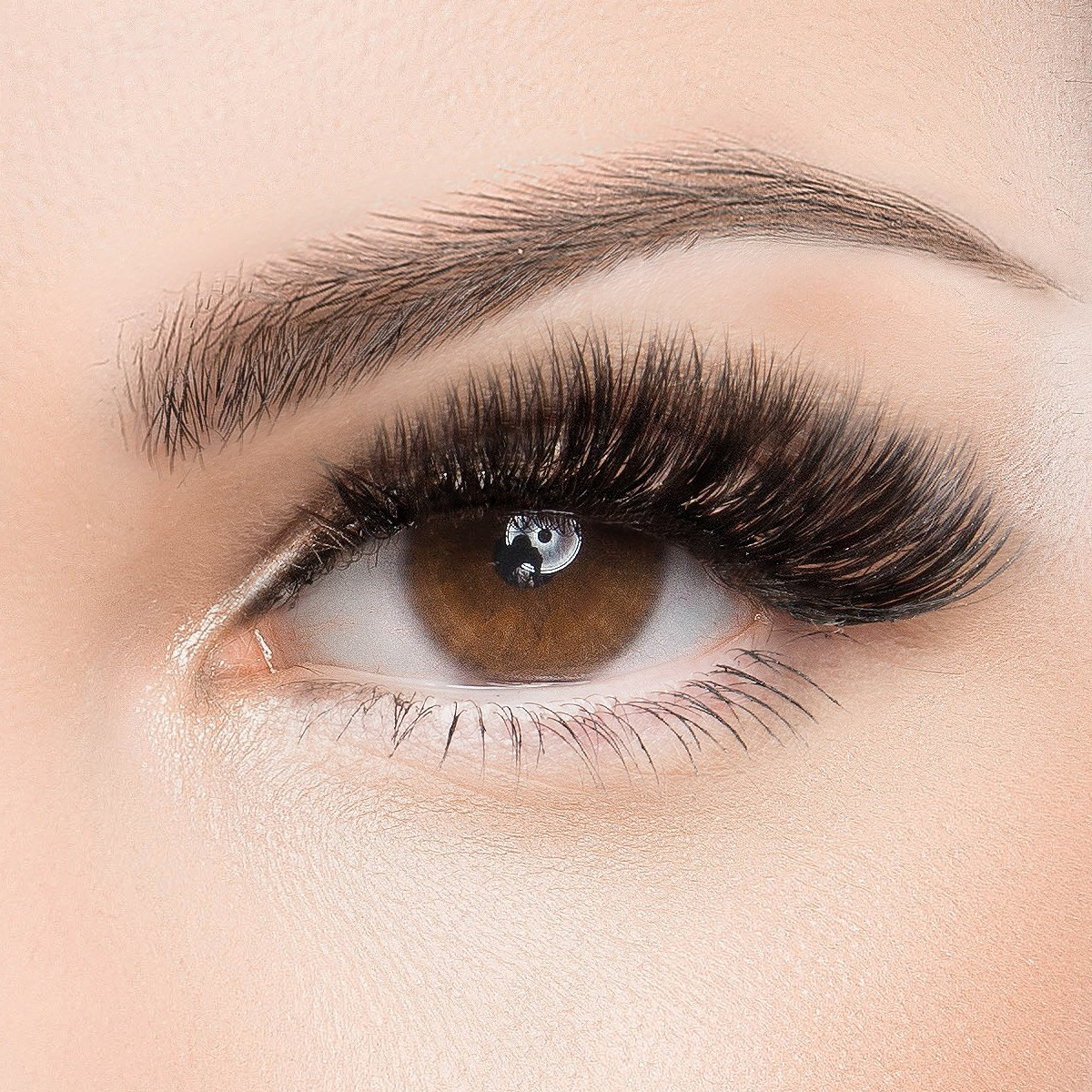 Welche wimpern extensions